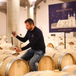 It's San Martino, at Donnafugata each must is wine…