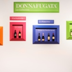 Presenting Donnafugata's new collections, a wine to meet your every desire.